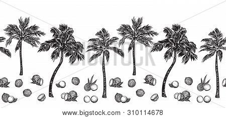 Black Sketch Palm Tree And Coconut Outline Horizontal Seamless Border. Vector Drawing Coco Plants. H