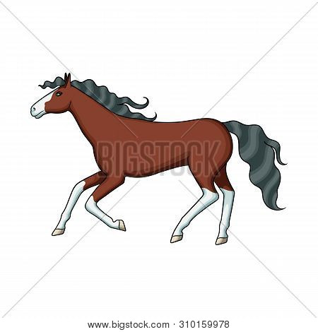 Vector Design Of Steed And Brown Symbol. Collection Of Steed And Gallop Vector Icon For Stock.