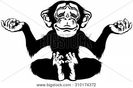 Cartoon Chimp Great Ape Or Chimpanzee Monkey Sitting In Lotus Joga Position And Meditating. Calm And