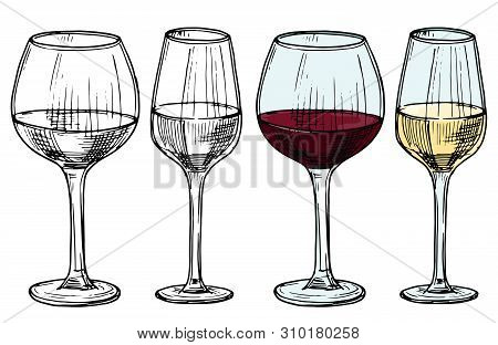 Hand Drawn Glasses With Red And White Wine Vector Illustration. Alcohol White And Red Drink Wine, Sk
