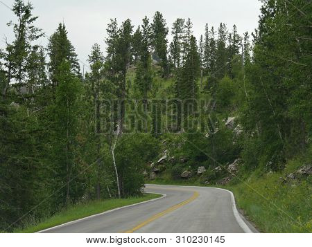 Part Of The 14-mile Scenic Drive Along Needles Highway, One Of The Best Attractions In South Dakota.