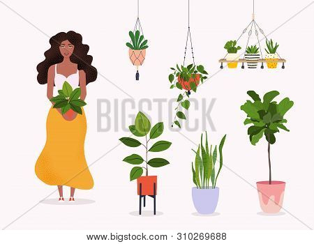 Woman Holds A Plant In Pot. Set Of Macrame Hangers For Plants Growing In Pots. Flowerpot Isolated Ob