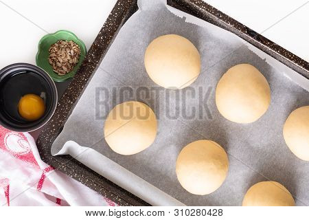 Food Concept Proving, Proofing Yeast Dough Of Hamburger Buns In Bake Pan Before Baking