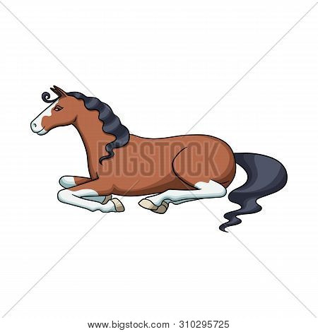 Isolated Object Of Steed And Brown Sign. Collection Of Steed And Brown Stock Symbol For Web.