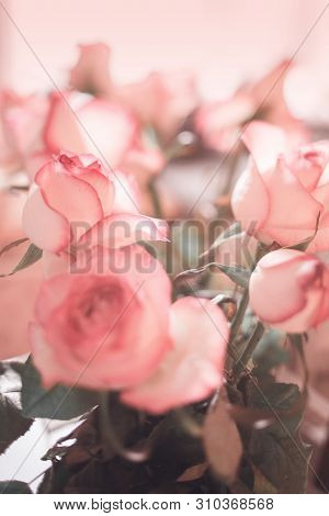 Blurred Of Sweet Roses In Pastel Color Style On Soft Blur Bokeh Texture