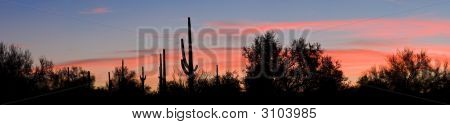 Santan Sunset