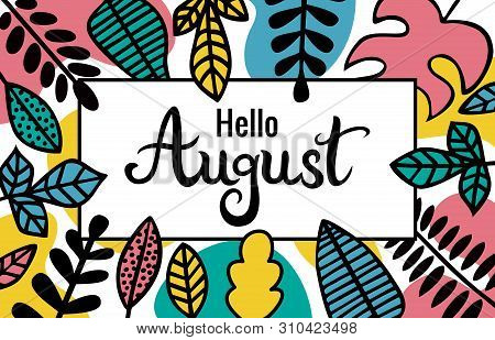 Lettering Hello August. The Inscription In A Rectangular Frame Decorated With Leaves Of Different Pl