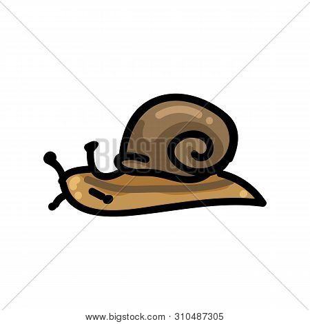 Brown Snail Cartoon Vector Illustration Motif Set. Hand Drawn Isolated Garden Creepy Crawlie Element