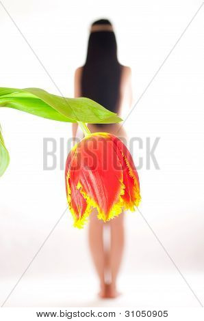 The naked girl on a white background with a tulip instead of a skirt a back to the spectator poster