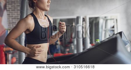 People Running In Machine Treadmill At Fitness Gym, Young Woman Workout In Gym Healthy Lifestyle, Yo