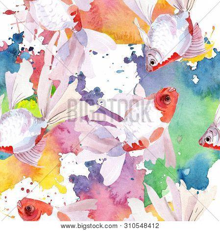 Goldfish Aquatic Underwater Colorful Tropical Fish Set. Watercolor Illustration Set. Seamless Backgr