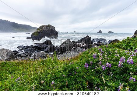 Samuel H Boardman State Park Is Situated In Oregon, West Coast, United States Of America, Travel Usa