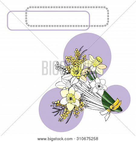 Bouquet Of Yellow Narcissus And Mimosa, Lilac Circles And Frames. Hand Drawn Ink And Colored  Sketch
