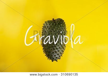 Graviola, An Exotic Fruit. Sweet Tropical Green Fruit