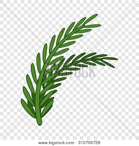 Fresh Rosemary Sprigs Icon. Cartoon Illustration Of Fresh Rosemary Sprigs Vector Icon For Web Design