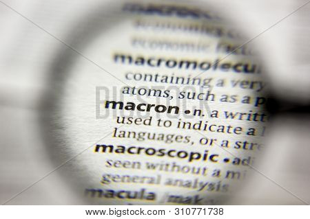 The Word Or Phrase Macron In A Dictionary