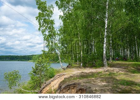 Parking For Cyclists In A Birch Grove On A Steep Bank Of The River.