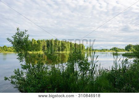 A Small Lake With An Overgrown Swampy Shore On A Summer Day.