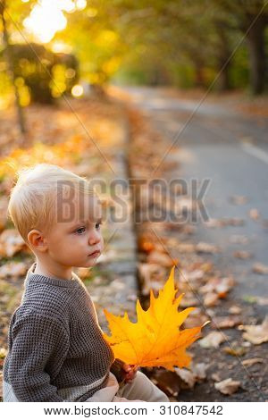 Warmth And Coziness. Happy Childhood. Sweet Childhood Memories. Child Autumn Leaves Background. Warm