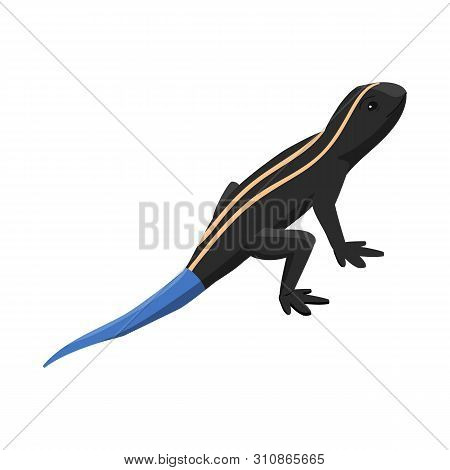 Vector Illustration Of Lizard And Tail Icon. Set Of Lizard And Iguana Stock Symbol For Web.