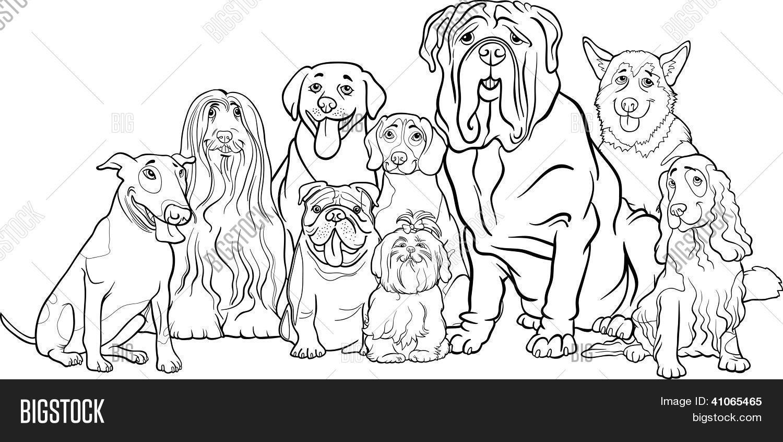 Vector y foto Grupo De Perros De (prueba gratis)   Bigstock