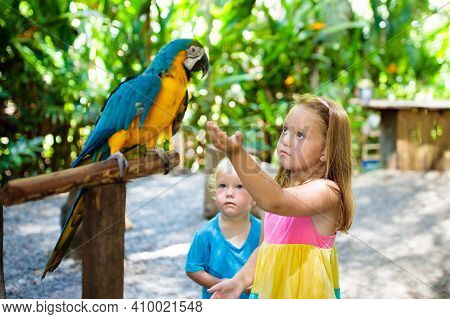 Kid Feeding Macaw Parrot In Tropical Zoo. Child Playing With Big Rainforest Bird. Kids And Pets. Chi