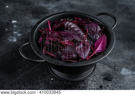 Leaves Of Swiss Red Chard Or Mangold Salad In A Colander. Black Background. Top View