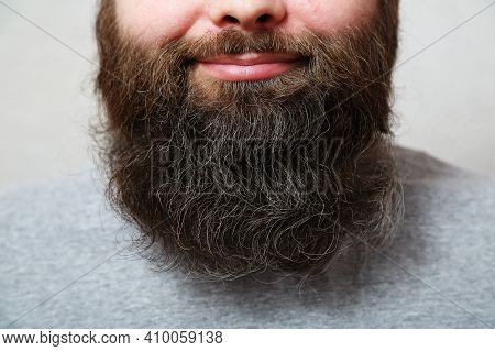 The Bearded Man Laughs. Lips, Nose, The Mouth Of A Bearded Man, Close-up. A Well-groomed, Thick, Bea