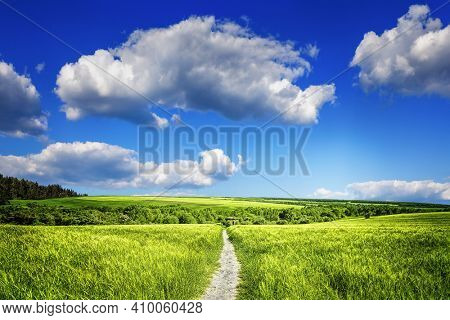 Beautiful organic agriculture and the blue sky with clouds