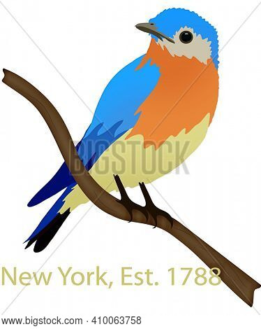 New York State Bird Eastern Bluebird Illustration with Clipping Path Isolated on White
