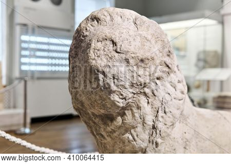 Sevastopol, Crimea - January 31, 2021: Head Of A Damaged Antique Lion Statue In The Exposition Of Th