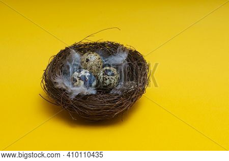 Nest With Egg And Feather On A Yellow Background