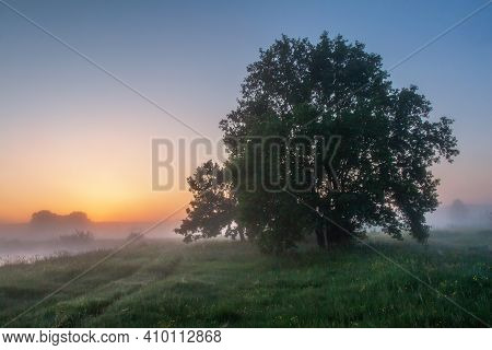 Scenery Summer At Dawn. Foggy Nature And Colorful Sky. Amazing Fresh Misty Morning Nature Landscape.