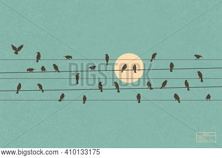 Birds On Wires. Flock Of Crows On Power Lines. Isolated Silhouette