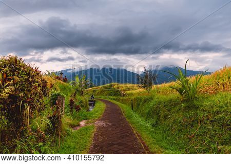 Road At Rise Terraces And Cloudy Sky With Mountains In Bali.