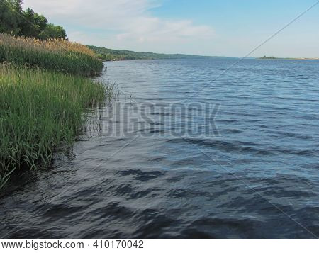 A River, Green Shore With Reeds And Blue Sky With White Clouds