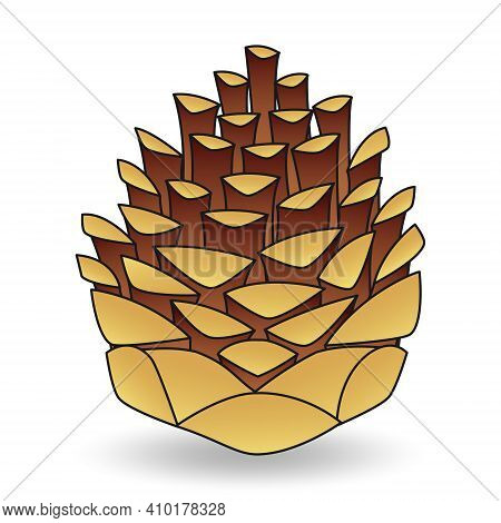 Cartoon Brown Pine Cone Isolated On White Background Close-up. Hand Drawn Lump. Design Element For Y