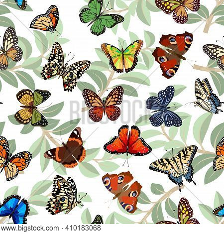 Pattern With Multicolored Butterflies.multicolored Butterflies On A Background Of Leaves In A Vector