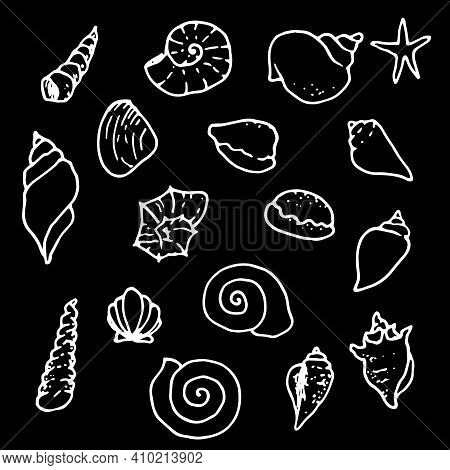 Doodle Illustration On Black Backdrop. Isolated Vector Illustration. Graphic Element Vector. Nature