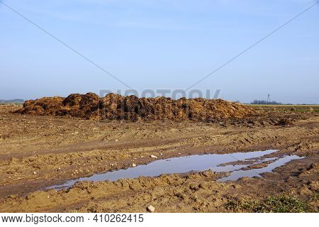 A Stack Of Natural Fertilizer Which Is Manure Before Spreading It In The Field. Spring Work On The F