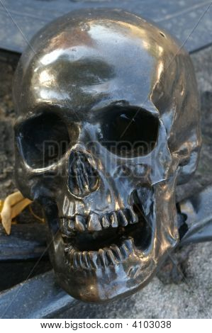 Scull On Grave