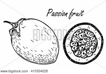 Passion Fruit Sketch Set. Vector Hand Drawn Passion Fruit Illustrations. Detailed Retro Style Image.