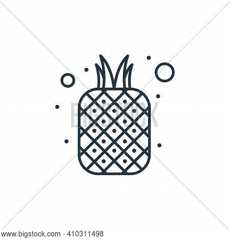 pineapple icon isolated on white background from brazilian carnival collection. pineapple icon thin
