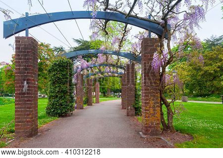 Outdoor Arcade With Blooming Flowers. East Park Of Southampton, United Kingdom