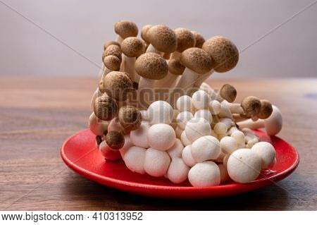 Shimeji Edible Mushrooms Native To East Asia, Buna-shimeji Is Widely Cultivated And Rich In Umami Ta
