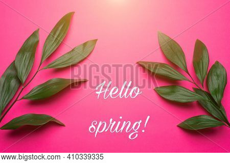 Green Leaves On A Pink Background . Plants And Flowers . Hello Spring Banner. New Season. March, Apr