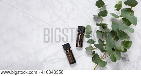 Banner With Eucalyptus Essential Oil Bottles And Fresh Eucalyptus Branch On Marble Background. Natur