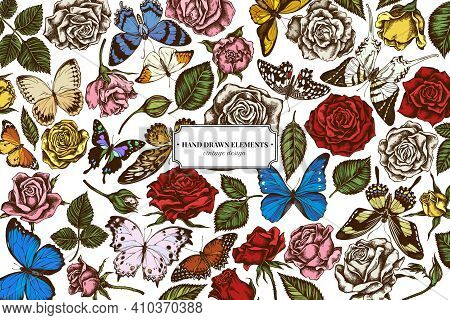 Floral Design With Colored Menelaus Blue Morpho, Giant Swordtail, Blue Morpho, Lemon Butterfly, Red
