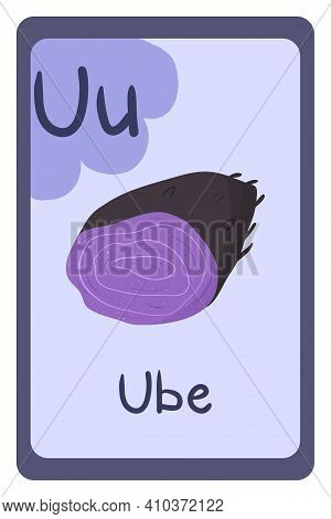Colorful Abc Education Flash Card, Letter U - Ube, Purple Root. Alphabet Vector Illustration With Fo