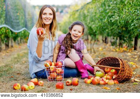 Portrait Of Little Girl And Beautiful Mother With Red Apples In Organic Orchard. Happy Woman And Kid
